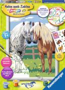 Ravensburger 285662 Malen nach Zahlen Glückliche Pferde